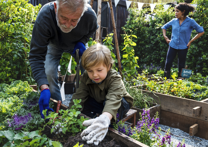 Adult male and small child gardening